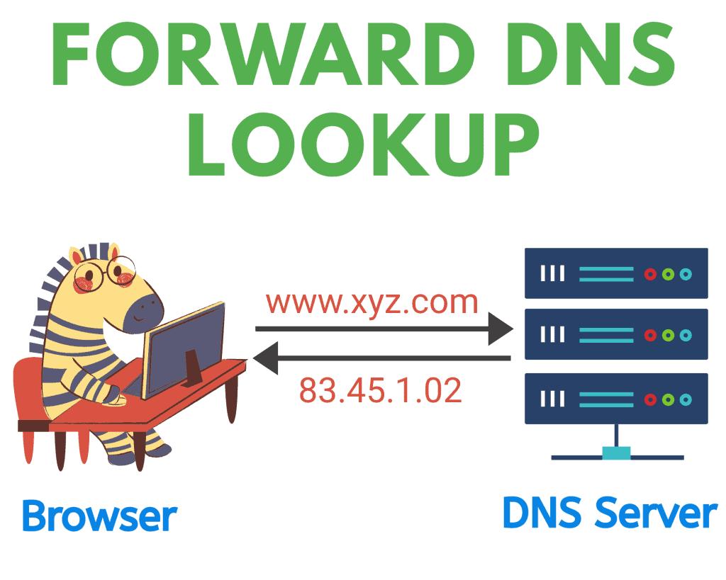 forward DNS lookup