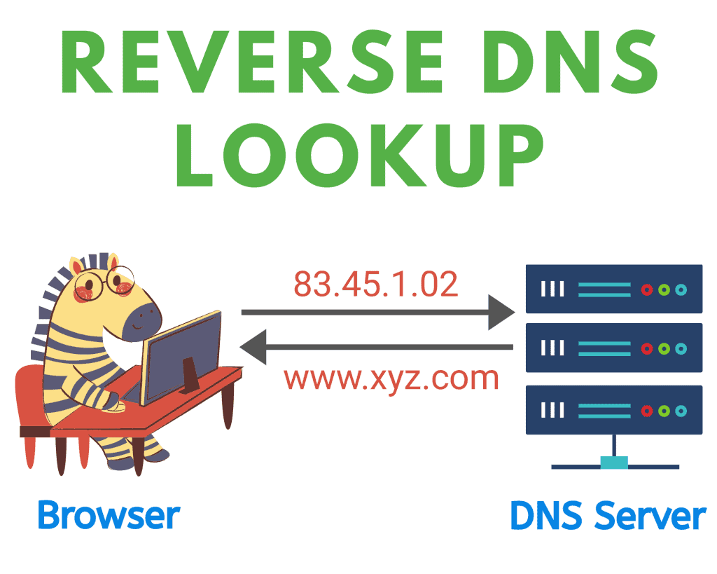 reverse DNS lookup