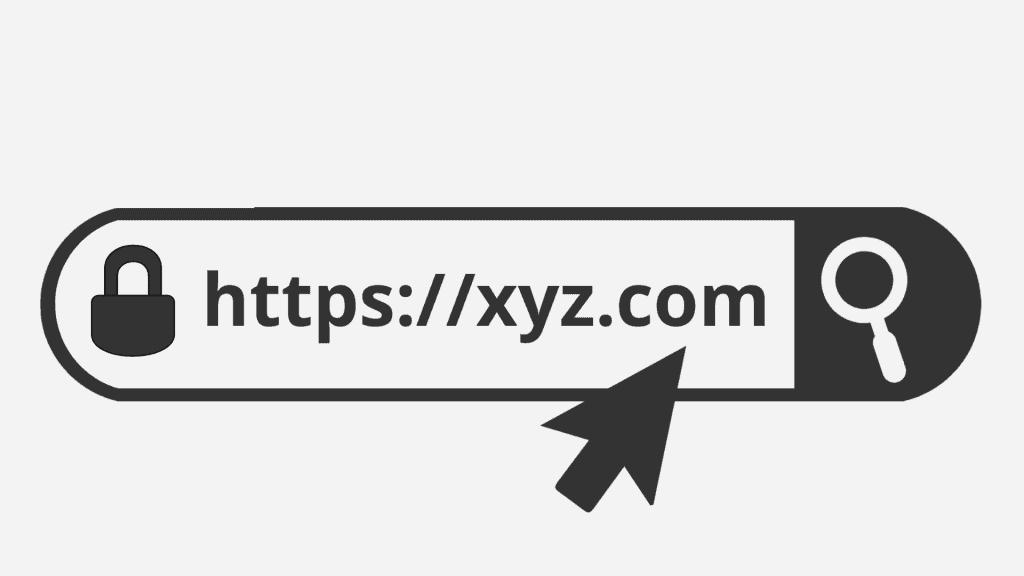 domain name search box