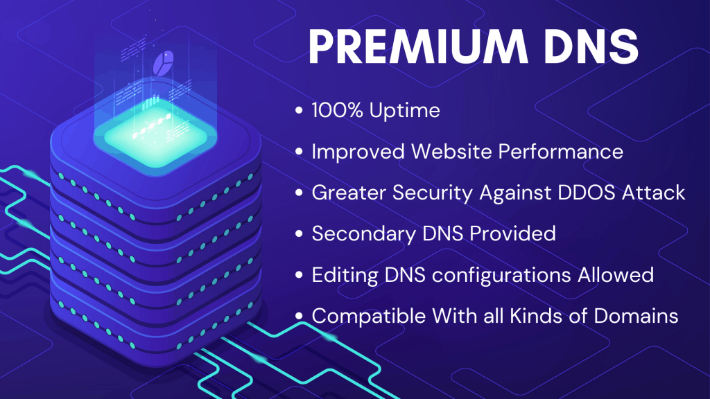 12. Premium dns