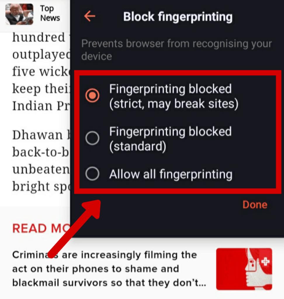brave fingerprinting blocked