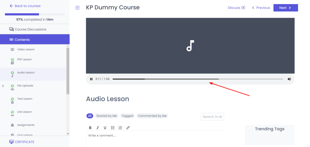 Student interface audio lessons