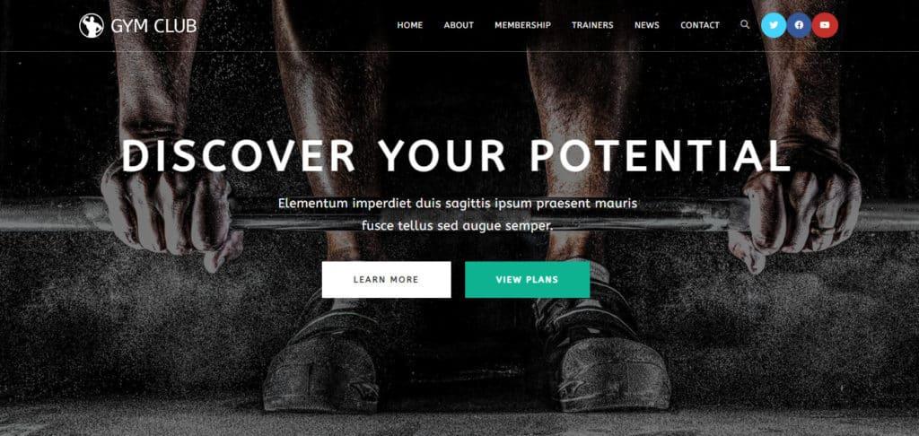 Demo Website for testing