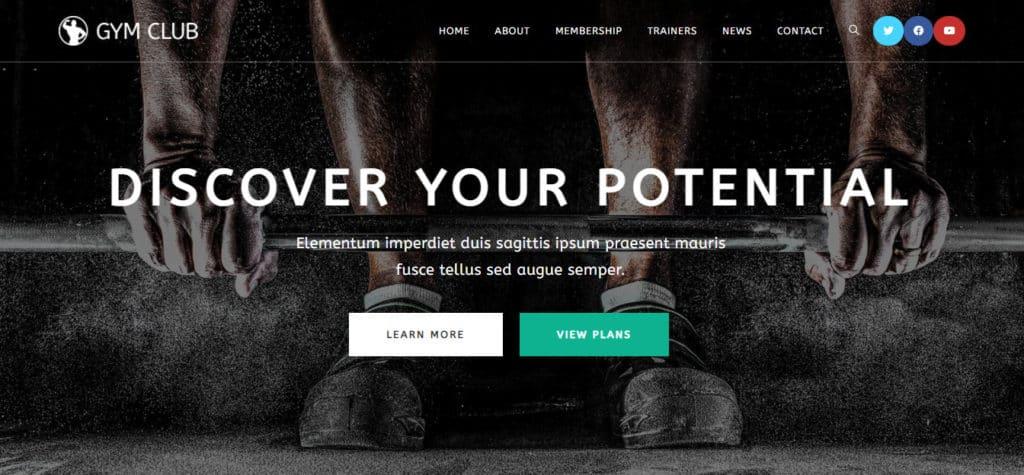 Website Homepage SS